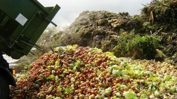 FAO-officials-condemn-unnecessary-loss-and-waste-of-good-food strict xxl